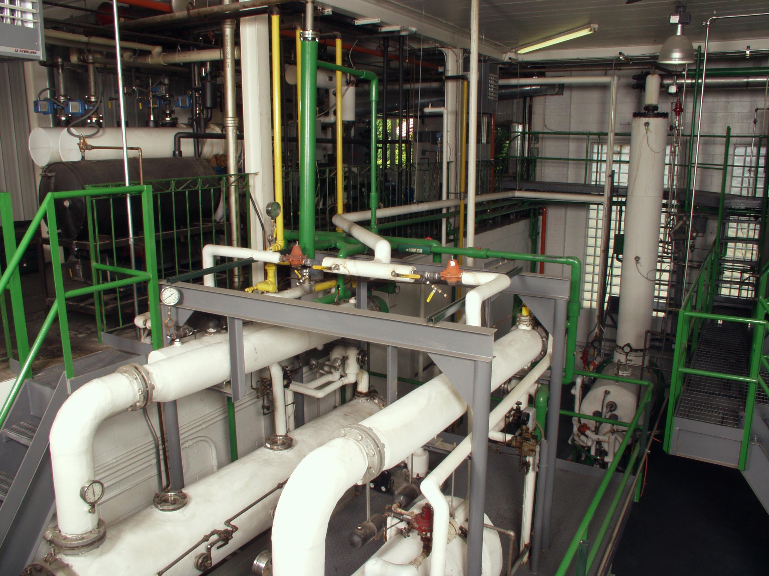 essential oil distillation