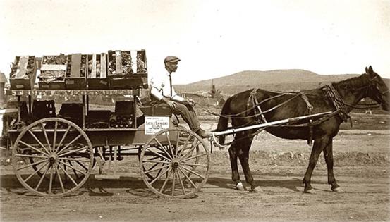 Morris-Brown-Lebermuth-Horse-Cart
