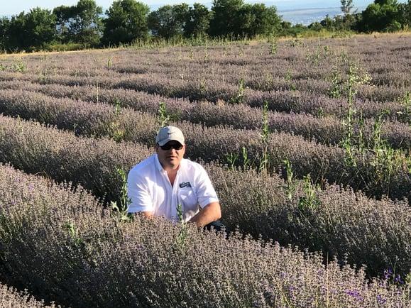 Alan_Bulgarian Lavender Field