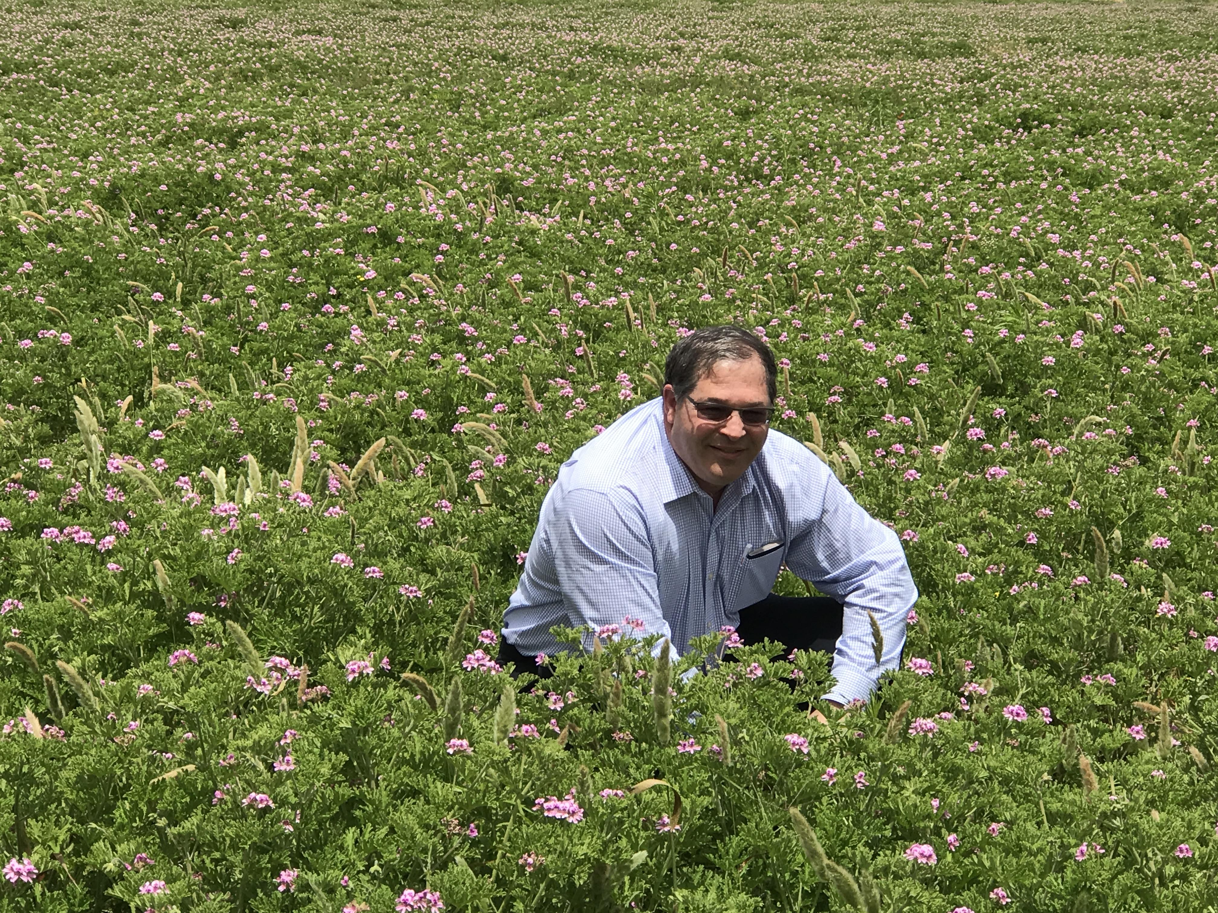 Alan Brown, CSO/Owner, visiting a geranium field.