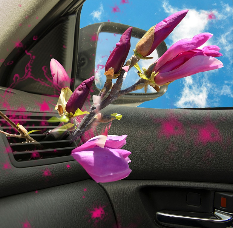 Even better than new car smell is a Lebermuth fragrance in your air freshener.
