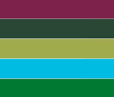 Hawaiian Rainforest color palette